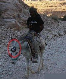 am dus mercedesul la remat si mi-am luat BMW