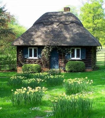 cabana-din-lemn