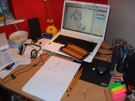 biroul-meu